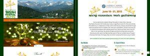 RMIF 2015 website